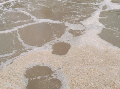 Xử lý vấn đề bọt nổi trên bể bùn hoạt tính do Nocardia