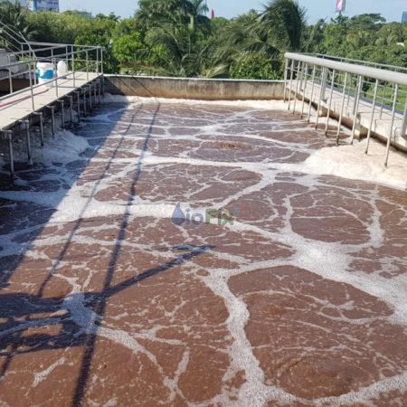 Xử lý nước thải bằng phương phápsinh học trong điều kiện hiếu khí