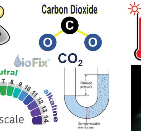 Các yếu tố ảnh hưởng đến vi sinh ở bể hiếu khí