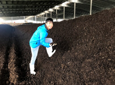 Quá trình ủ hiếu khí và các yếu tố ảnh hưởng đến quá trình ủ hiếu khí
